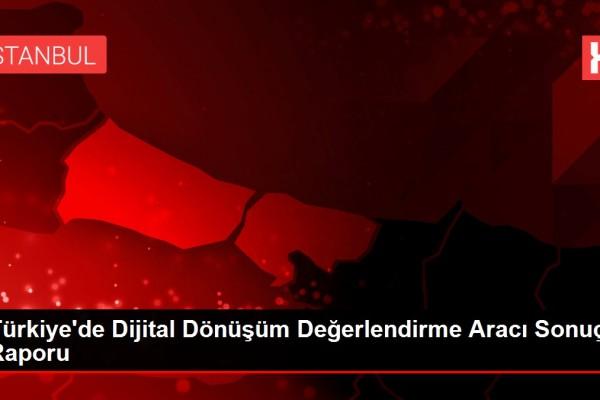 turkiye-de-dijital-donusum-degerlendirme-arac-13400081_local